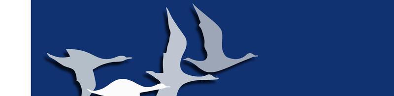 Teil1 Logo 50